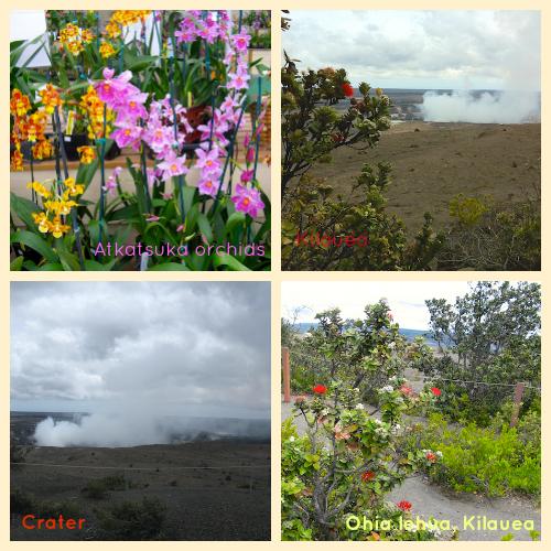 Hawaii Kilauea Halemaumau crater