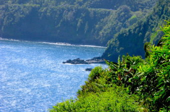 View from Road to Hana