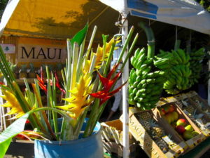 Maui fruit stand heliconia