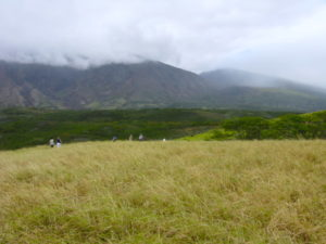 Maui leeward side