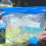 ice-cream-quart-bags