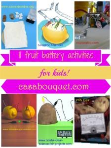 fruit battery & voltaic pile