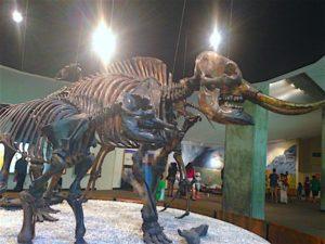 page-mastodon