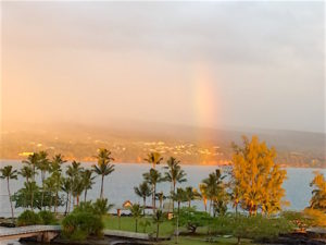 Things to do in Hilo Hawaii include culture, history, food, and outdoors! This Big Island Windward town has a beautiful bays, rivers, gardens and parks.