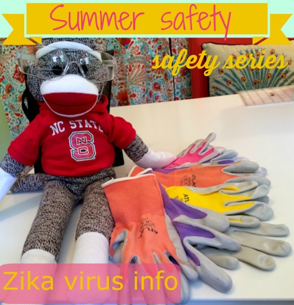 Summer safety – Zika virus and series
