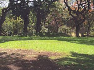 moanalua-hula-mound