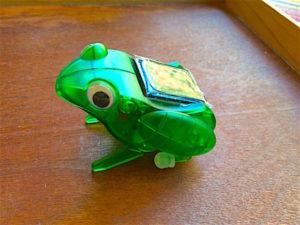 solar-frog-closeup