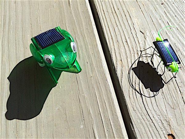 Solar robot activity – frog and grasshopper
