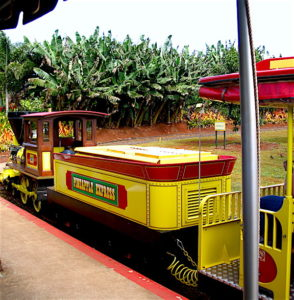 dole-train-2