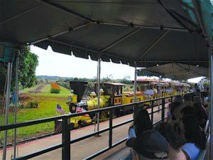 dole-train