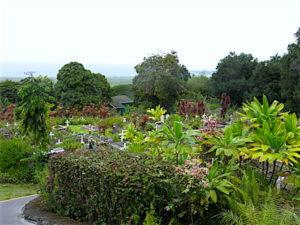 kona-st-benedict-garden