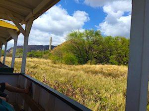 hawaiian-railway-electric