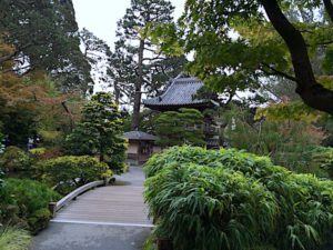 7 things to do in San Francisco include beautiful Victorian homes (Haas-Lilienthal House), Haight-Ashbury, Golden Gate Park and the Japanese Tea Garden.