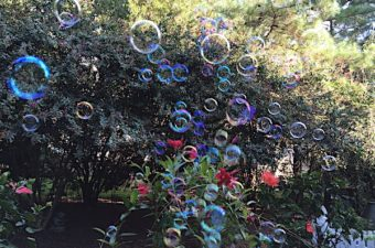 9 bubble activities use a solution and moving air to teach chemistry principles. Bubble recipes and wand ideas included.