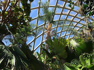 denver-botanic-garden-10
