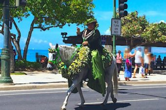 Pa'u riders and the Aloha Festival floral equestrian parade are part of the great cultural practices of Hawaii. Women ride horses draped in yards of elegant fabric. Both women and horses are adorned with leis.