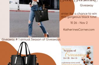 fab fashion giveaway 1 sidebar