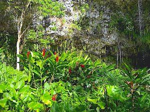 wailua-kauai-11
