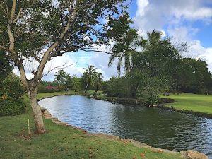 wailua-kauai-24